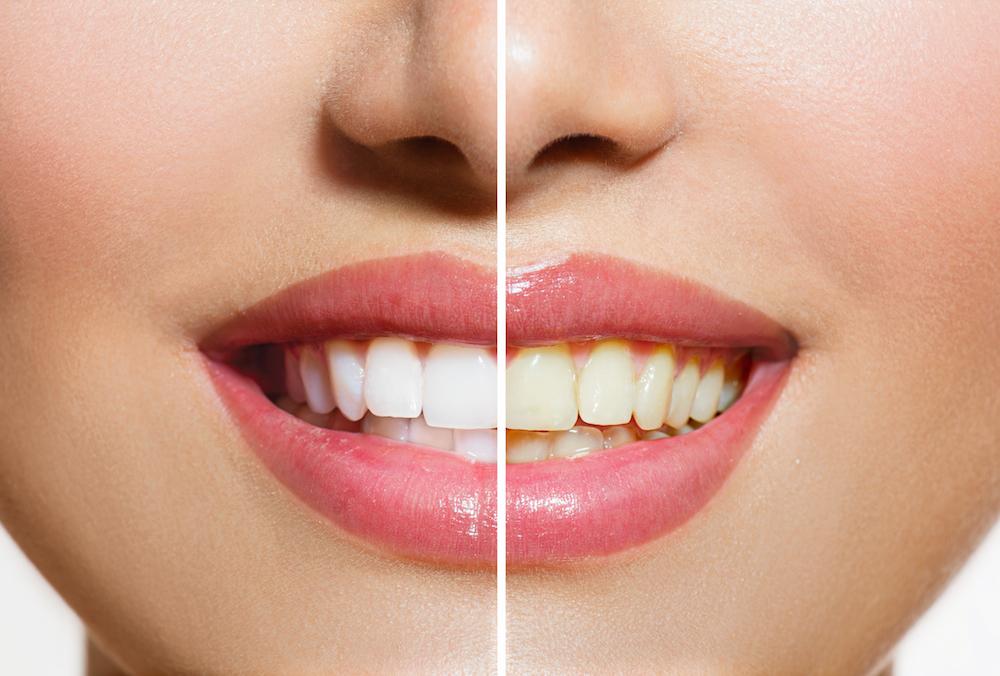 40503 Dentist